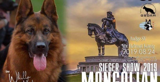 mongolian-seiger-2019